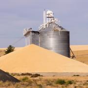Зерновая безопасность. Как сохранить качество зерна в элеваторах